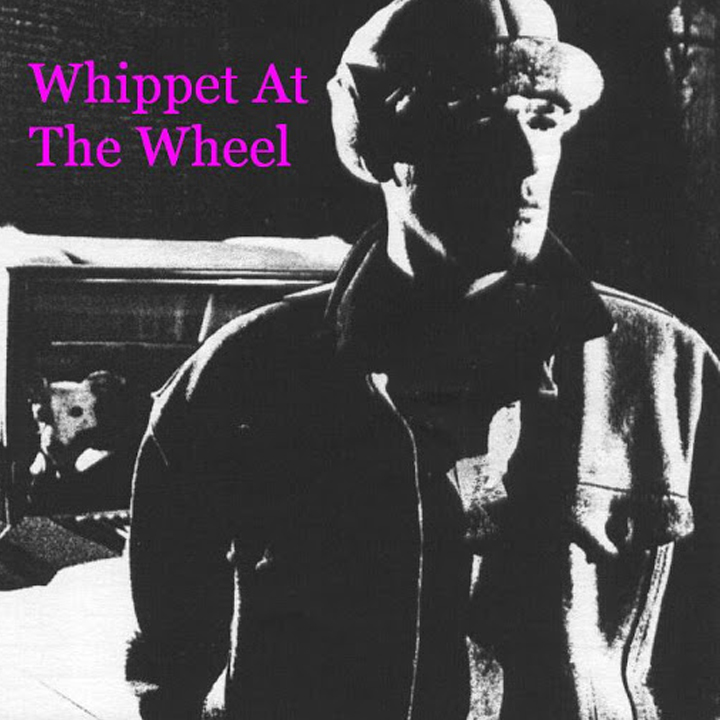 Whippet at the Wheel